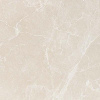 Princeton Polished 24X24X1/2 Marble Tiles