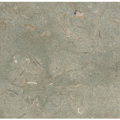 Olive Green Honed 12X12X3/8 Limestone Tiles
