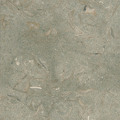 Olive Green Honed 16X16X1/2 Limestone Tiles