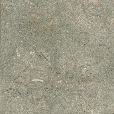 Olive Green Honed 24X24X1/2X1/5 Limestone Tiles