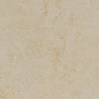 New Casablanca Honed Filled 18X18X1/2 Limestone Tiles