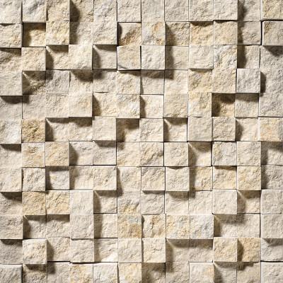 Seashell Exposure 1X1 Limestone Mosaics