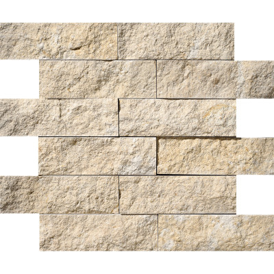 Seashell Exposure 2X6 Limestone Mosaics