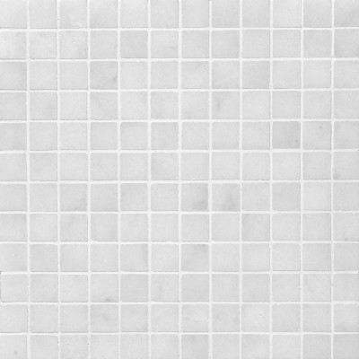 Avalon Polished 1X1 Marble Mosaics