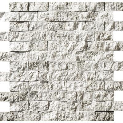 Silver Shadow Exposure 1X2 Marble Mosaics