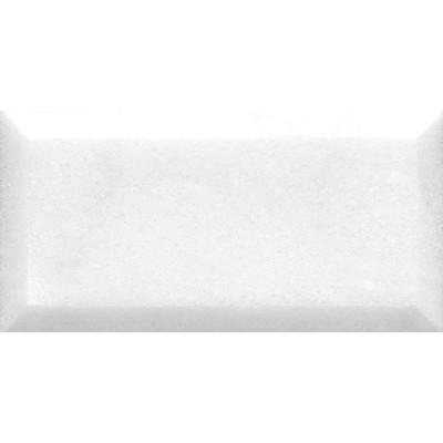Avalon Polished 2 3/4X5 1/2X3/8 Marble Tiles